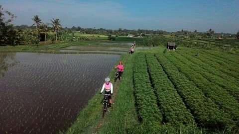 Mountain Bike Bali