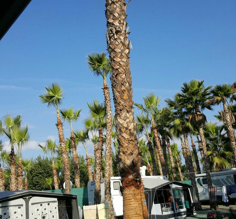Camping Naturista Almanat