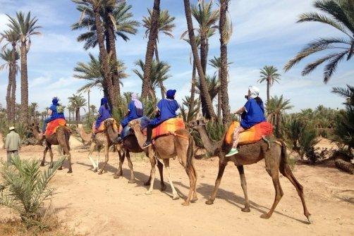 Medina Sightseeing Tours
