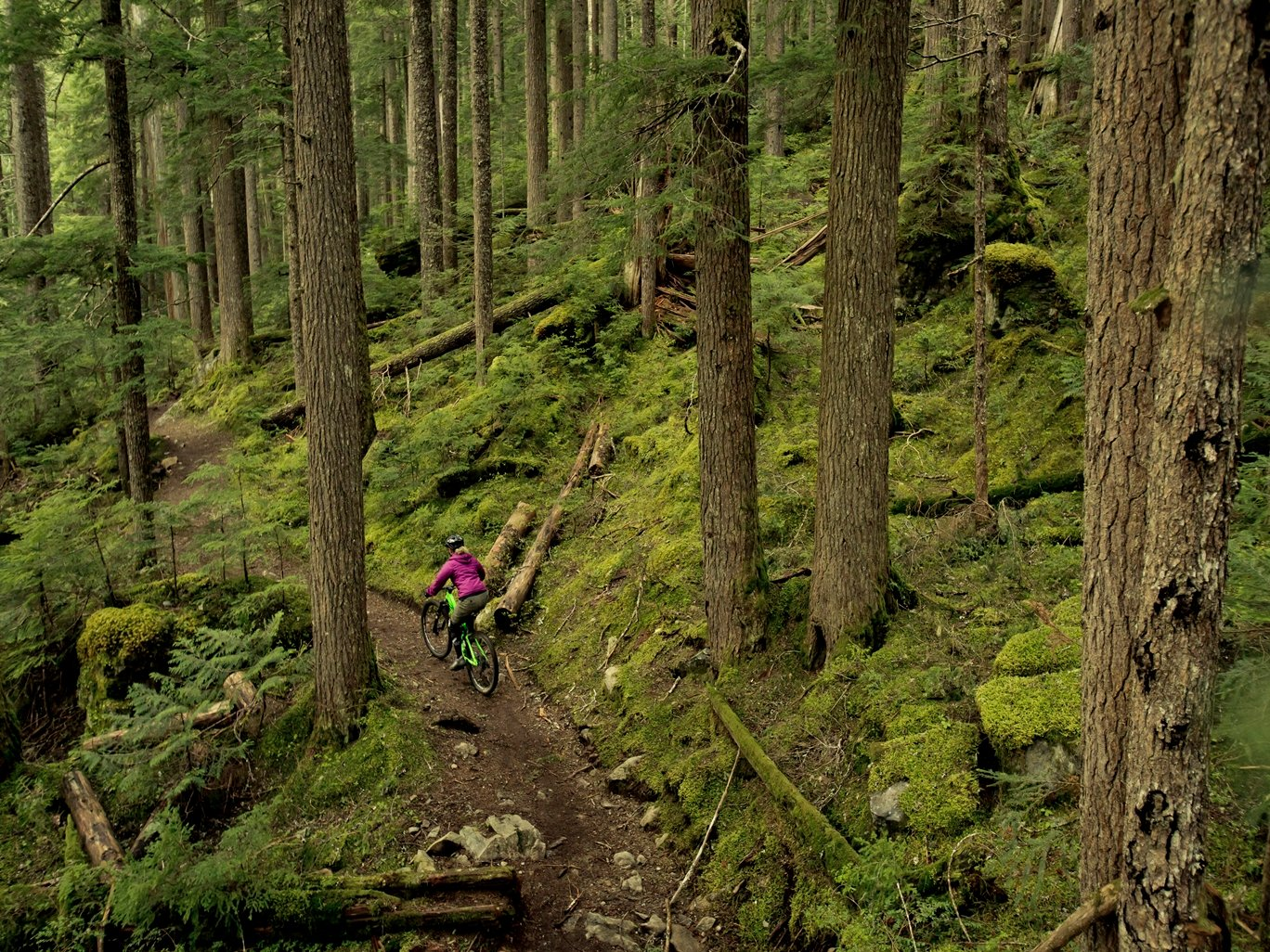 Biking in Whistler Photo by Justa Jeskova