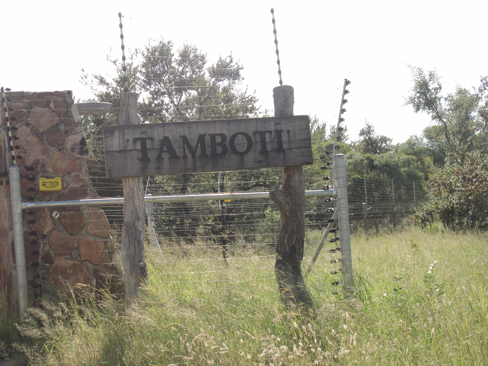 Tamboti Satellite Camp