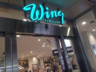 Wing Kawasaki