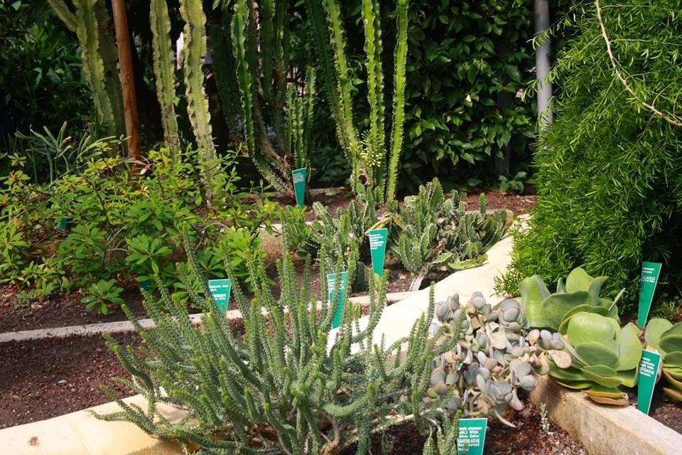 Jardin Botanico de Cordoba, Кордова: лучшие советы перед посещением