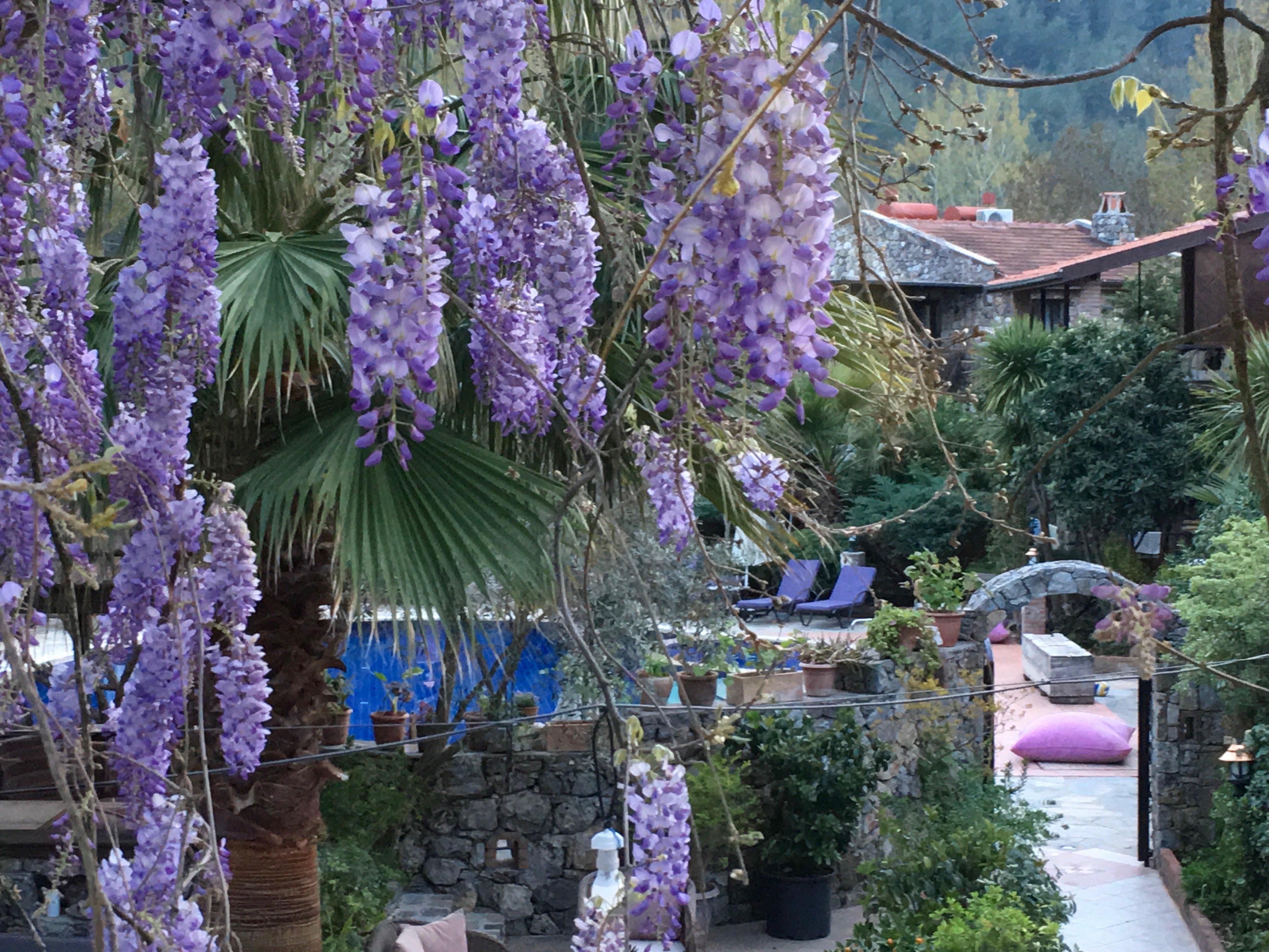 Gunay's Garden Villas