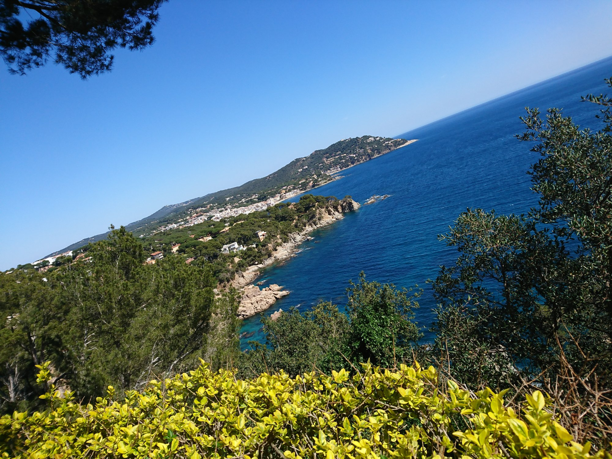 Jardi Botanic de Cap Roig (Calella de Palafrugell, Spania) - Anmeldelser