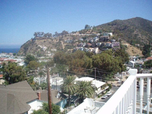 View from our hotel in Catalina Island off the shores of Los Angeles, a truly magical resort!!!