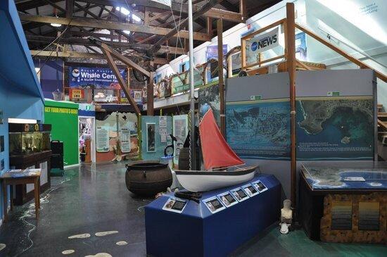 South Australia Whale Centre