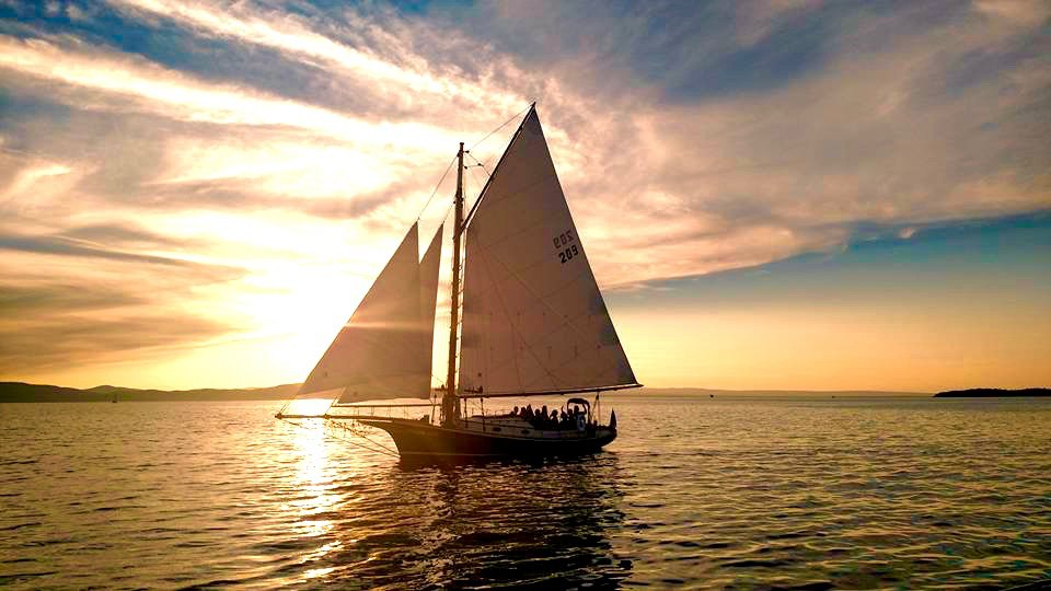 the top 10 things to do near courtyard burlington harbor tripadvisor rh tripadvisor com