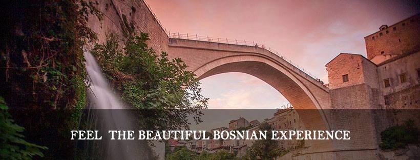 Bosnian Experience