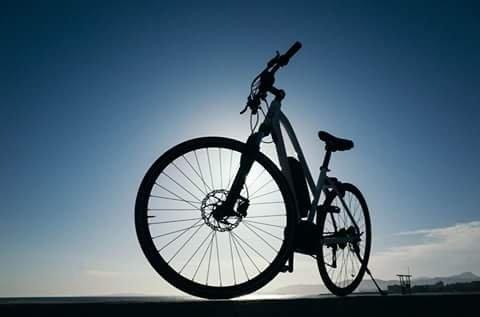 Bikes and More Mallorca