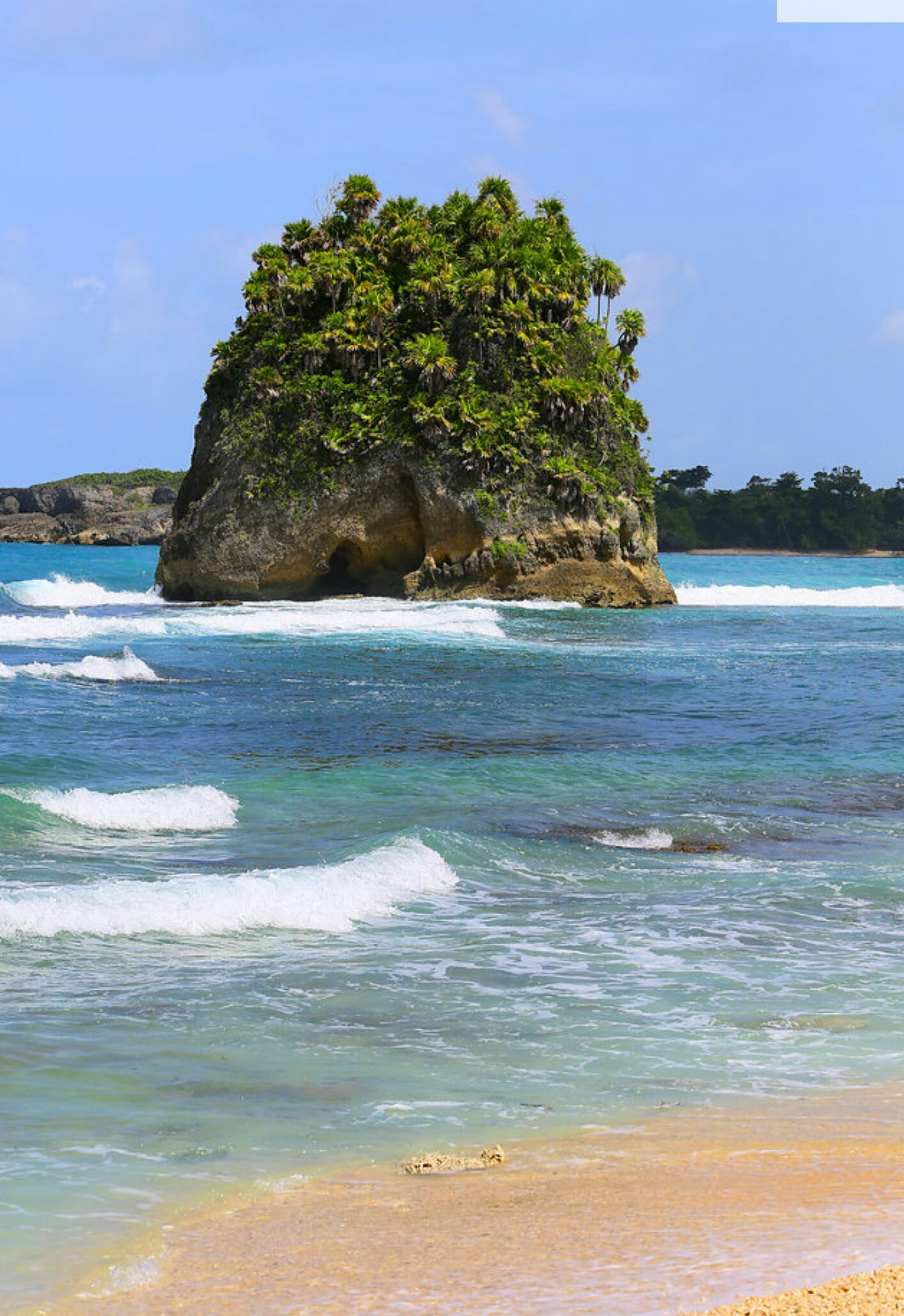 Wild untouched beach in Portland Jamaica