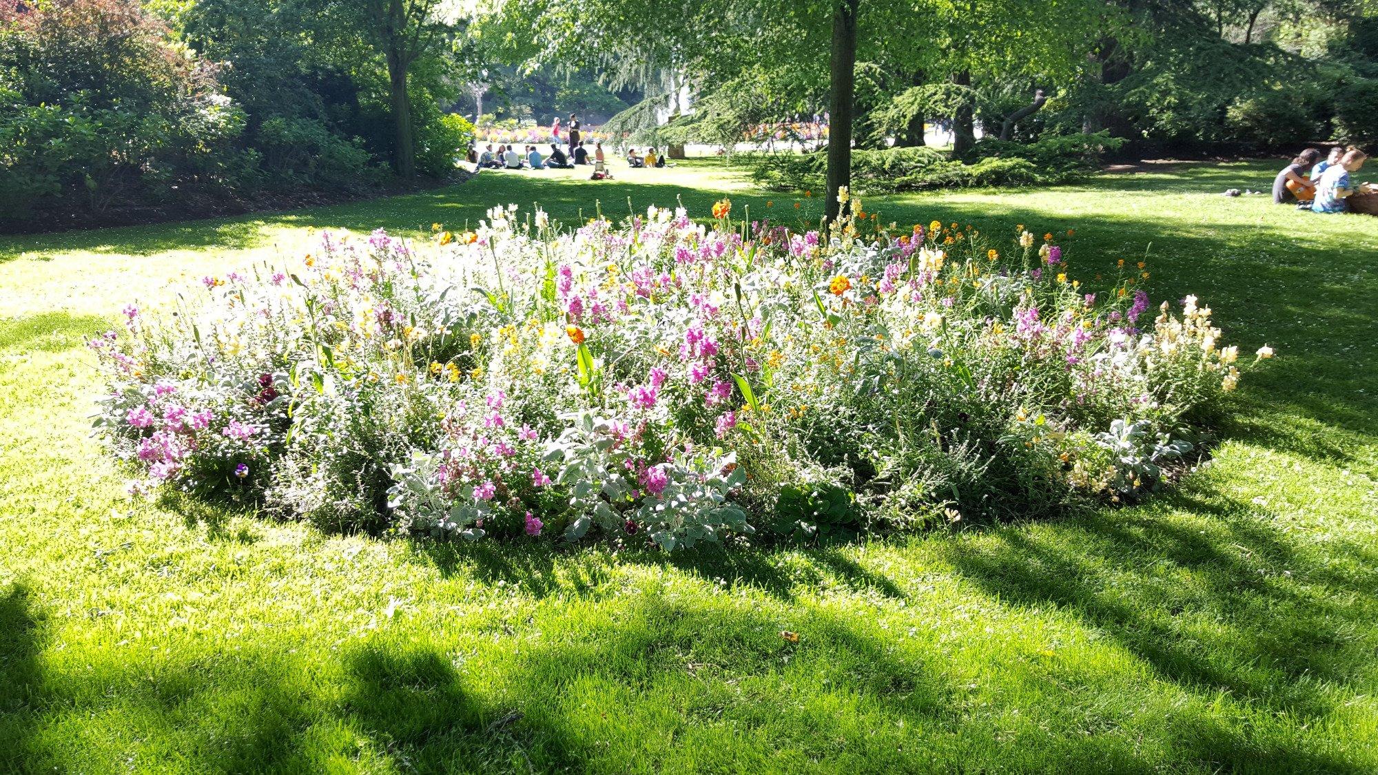Jardin du grand rond toulouse ce qu 39 il faut savoir tripadvisor for Jardin grand rond toulouse