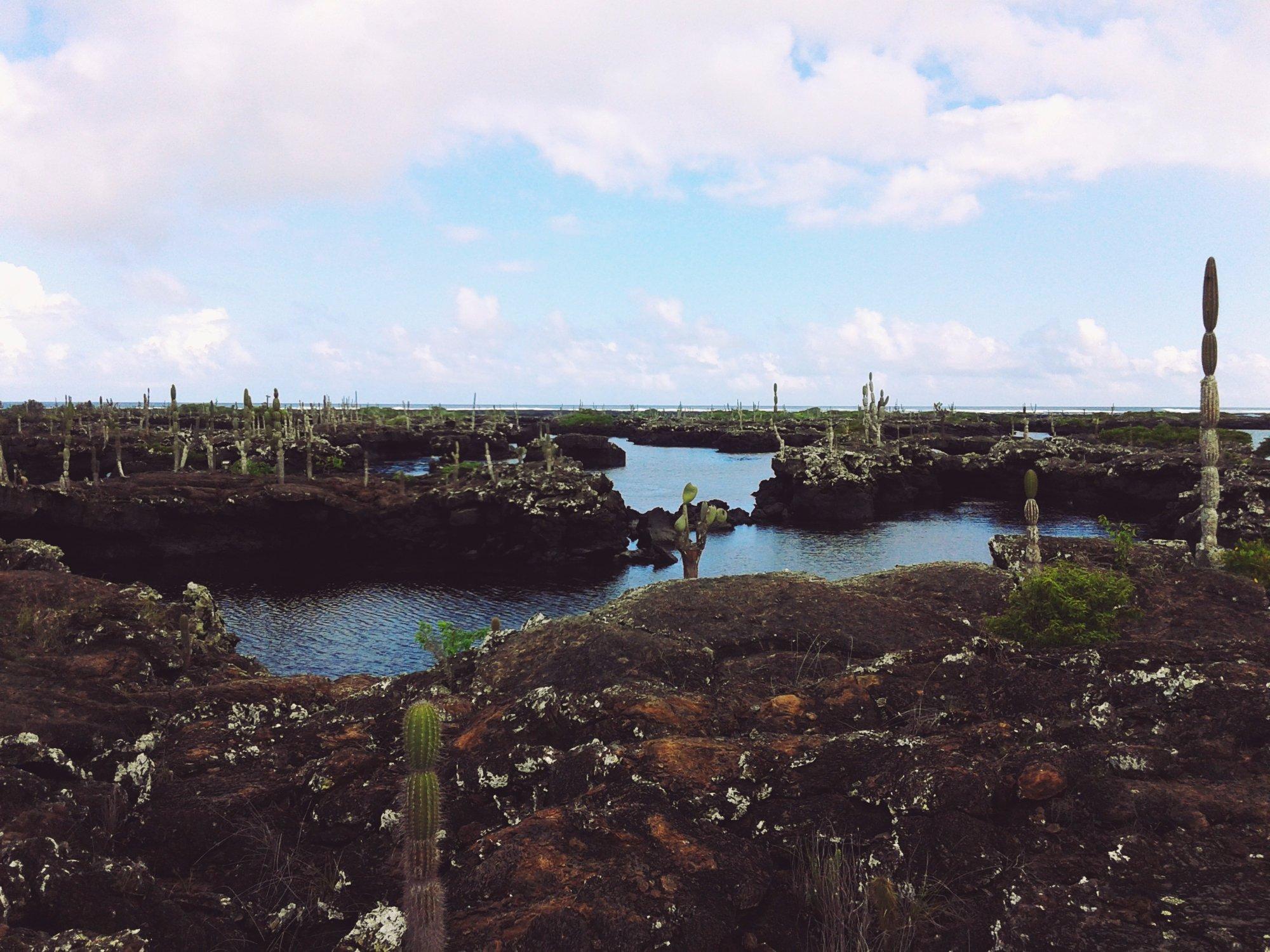 Los Túneles in Isabela island