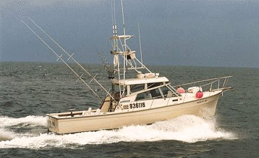 Movin On Montauk Fishing Charters