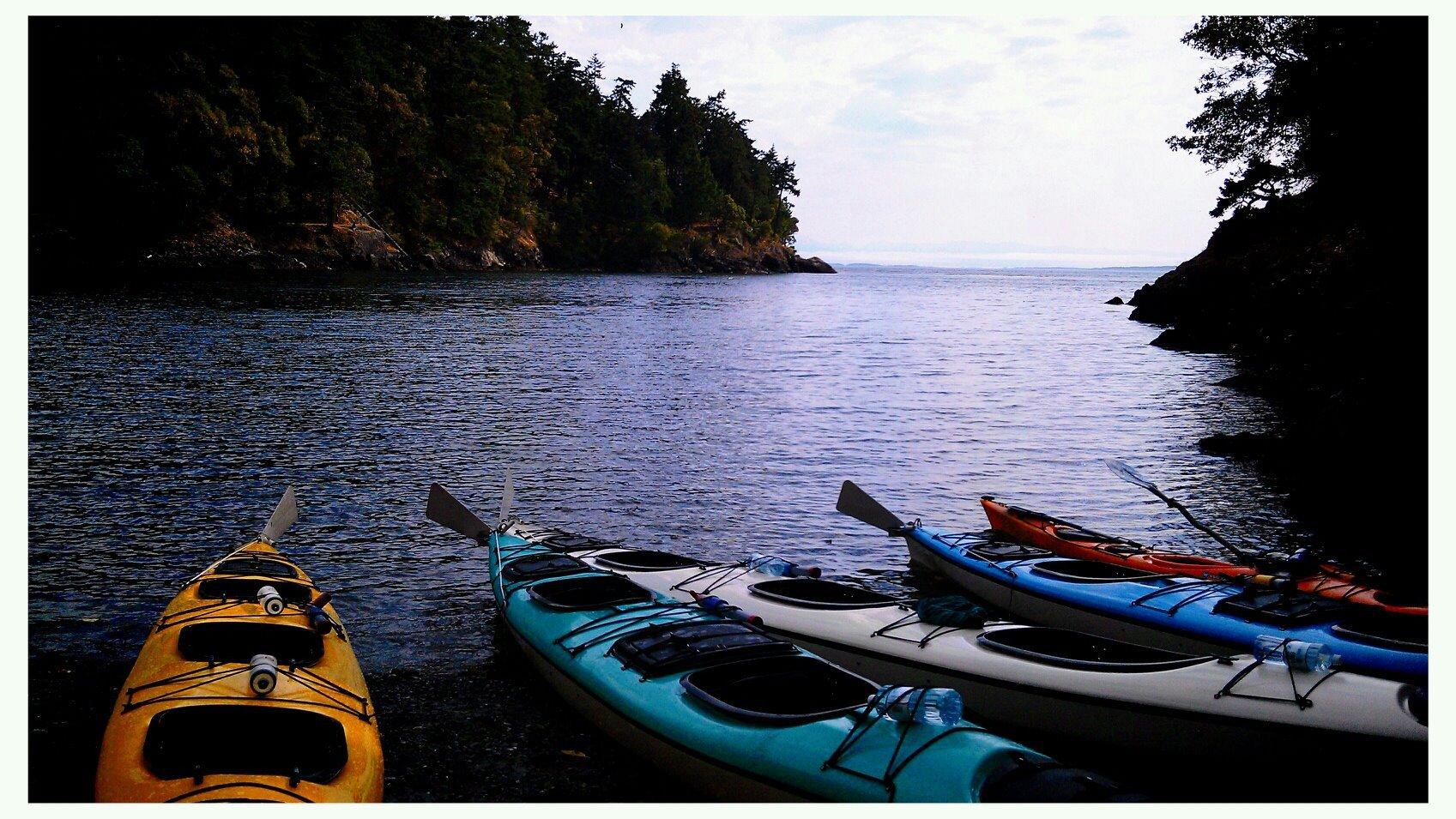 Sea Kayaking for Killer Whales