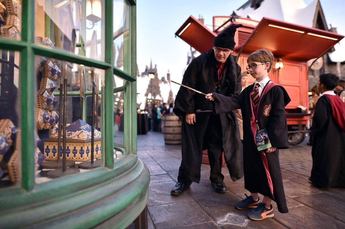 Become a wand expert at The Wizarding World of Harry Potter™