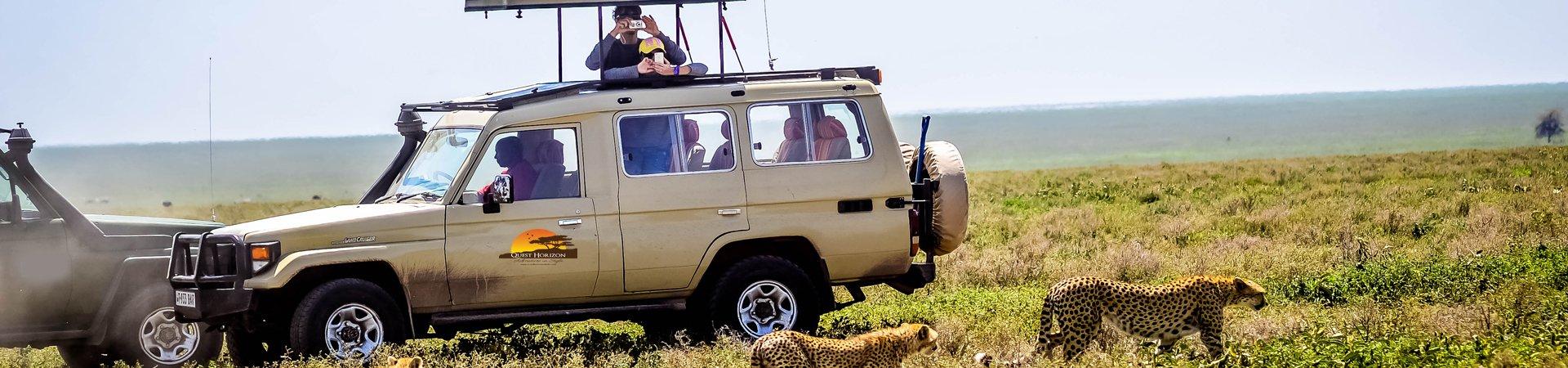 Quest Horizon Safaris