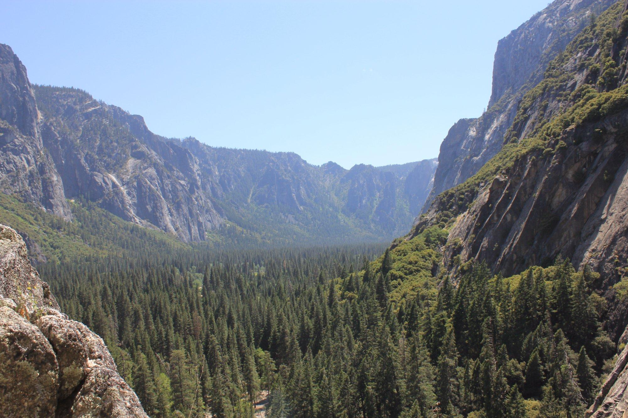 View from Sunnyside Bench, Yosemite, CA