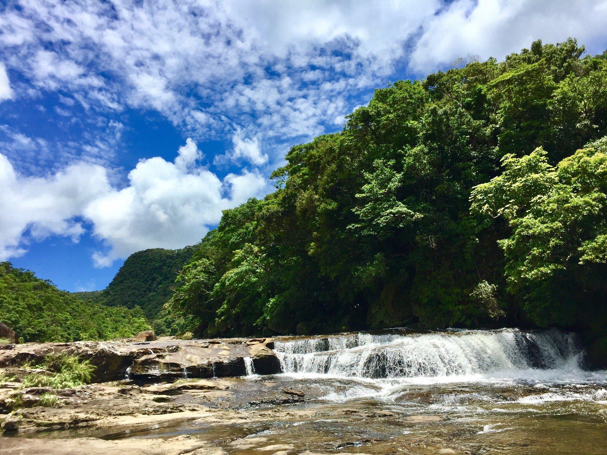 Iriomote Island - Taketomicho Iriomote-jima - Ce quil faut savoir - Trip...
