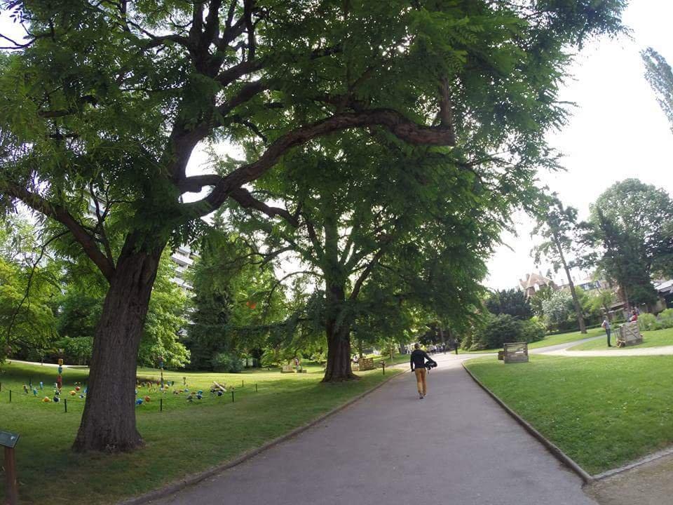 Montigny les metz jardin botanique de metz for Jardin botanique metz