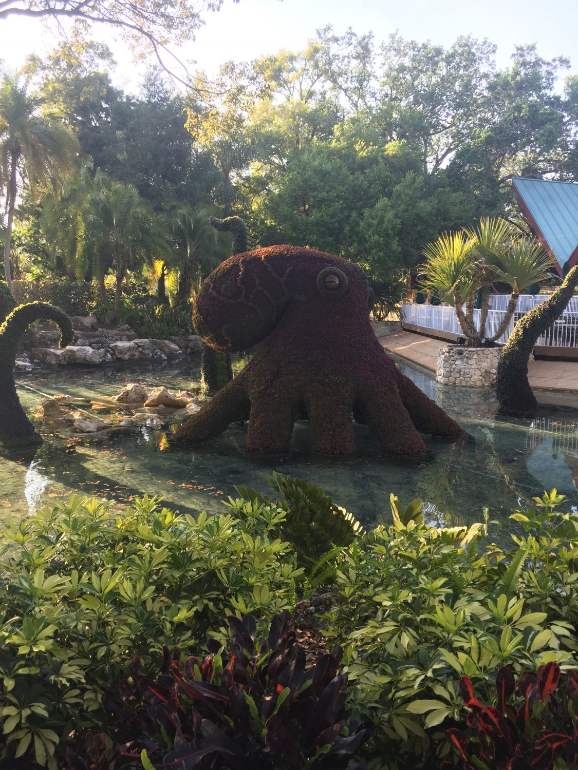 Busch Gardens Tampa Bay Fl Family Vacations Trips