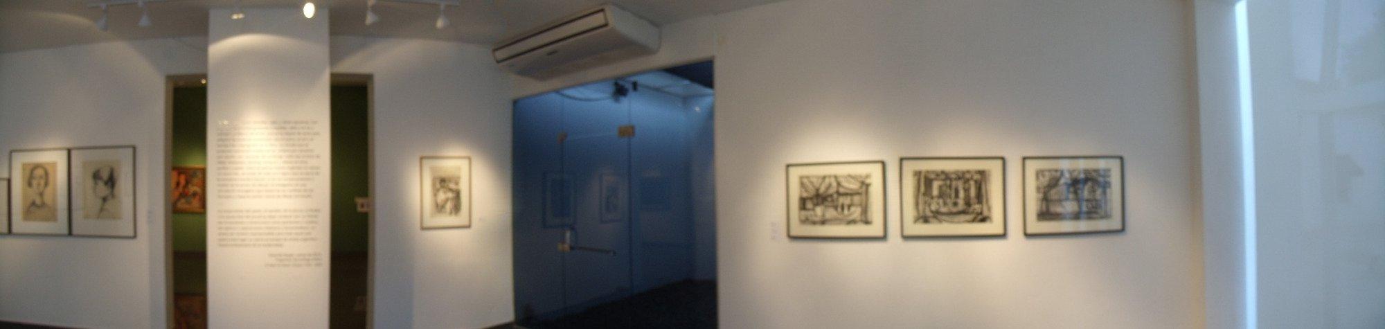 Museo de Bellas Artes Octavio de la Colina