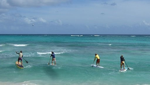 Paddlesurf Estepona