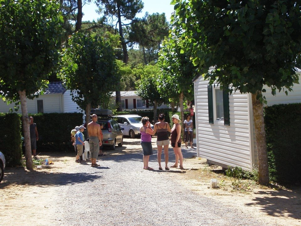 Camping L'Oree du Bois (Saint Jean de Monts, Vendee, France) Campground Reviews& Photos  # Camping Orée Du Bois