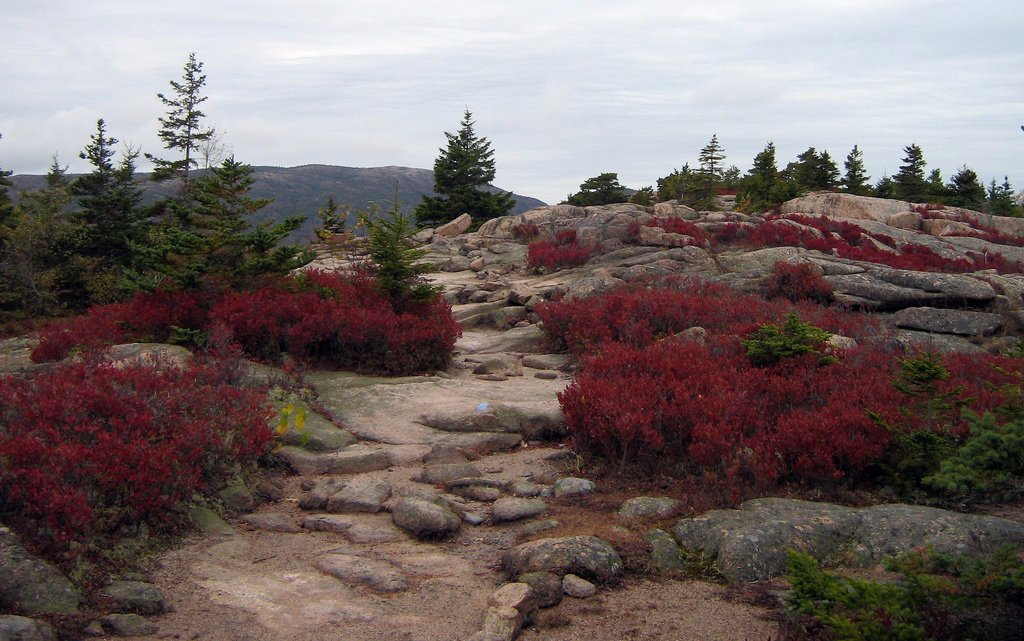 Acadia National Park..
