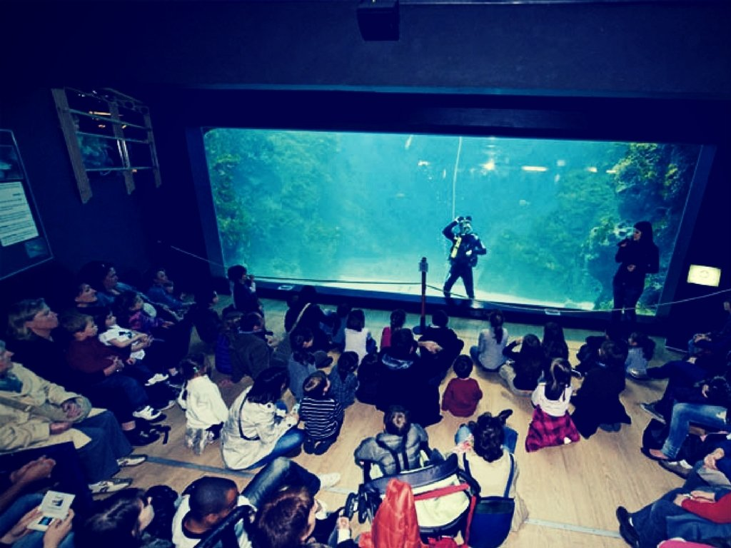 aquarium de lyon ranska arvostelut tripadvisor
