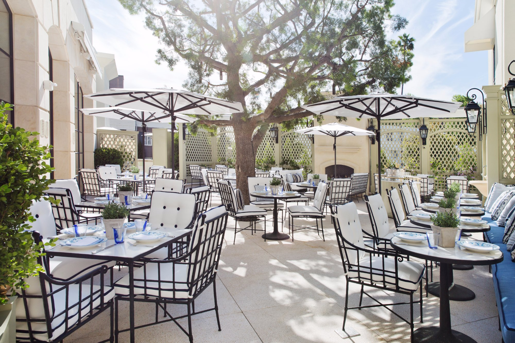 the belvedere beverly hills beverly hills menu prices all photos 84