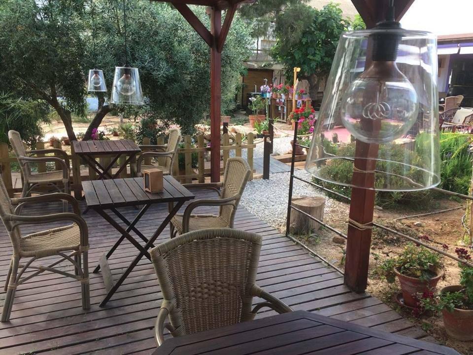 El jardin de las palomas pilar de la horadada for Bazzel el jardin de los secretos