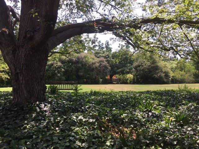 Los Angeles County Arboretum U0026 Botanic Garden