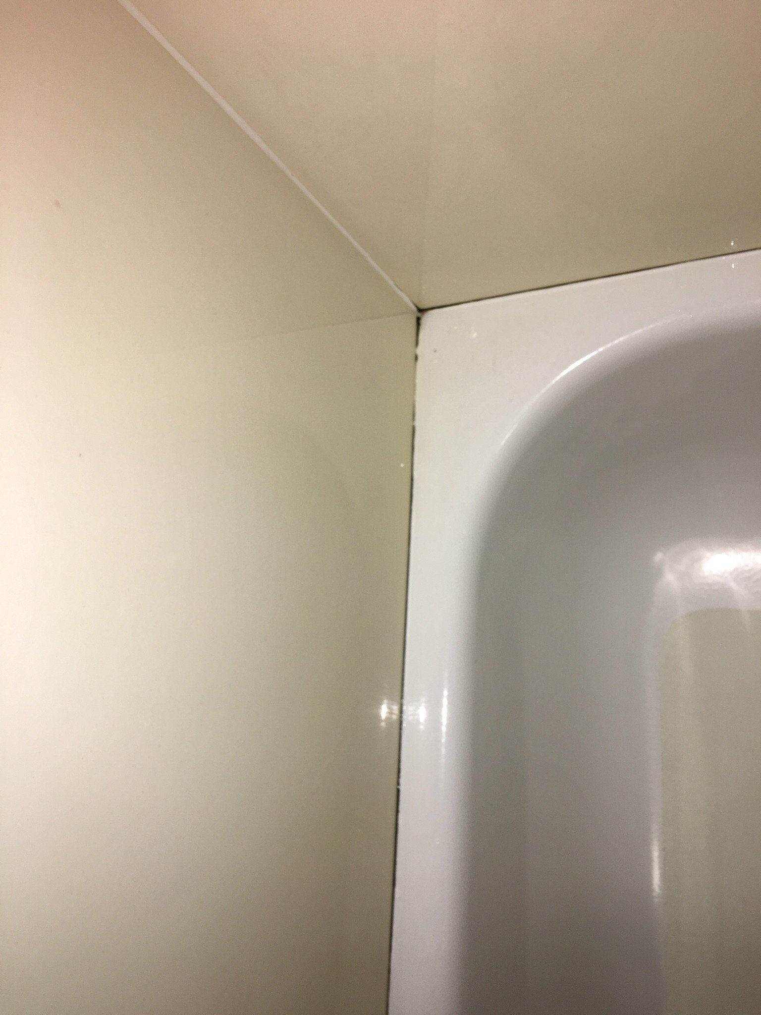 Missing or poorly caulked shower