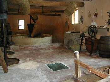 Coleccio Museografica Municipal Museu Viu de l'oli