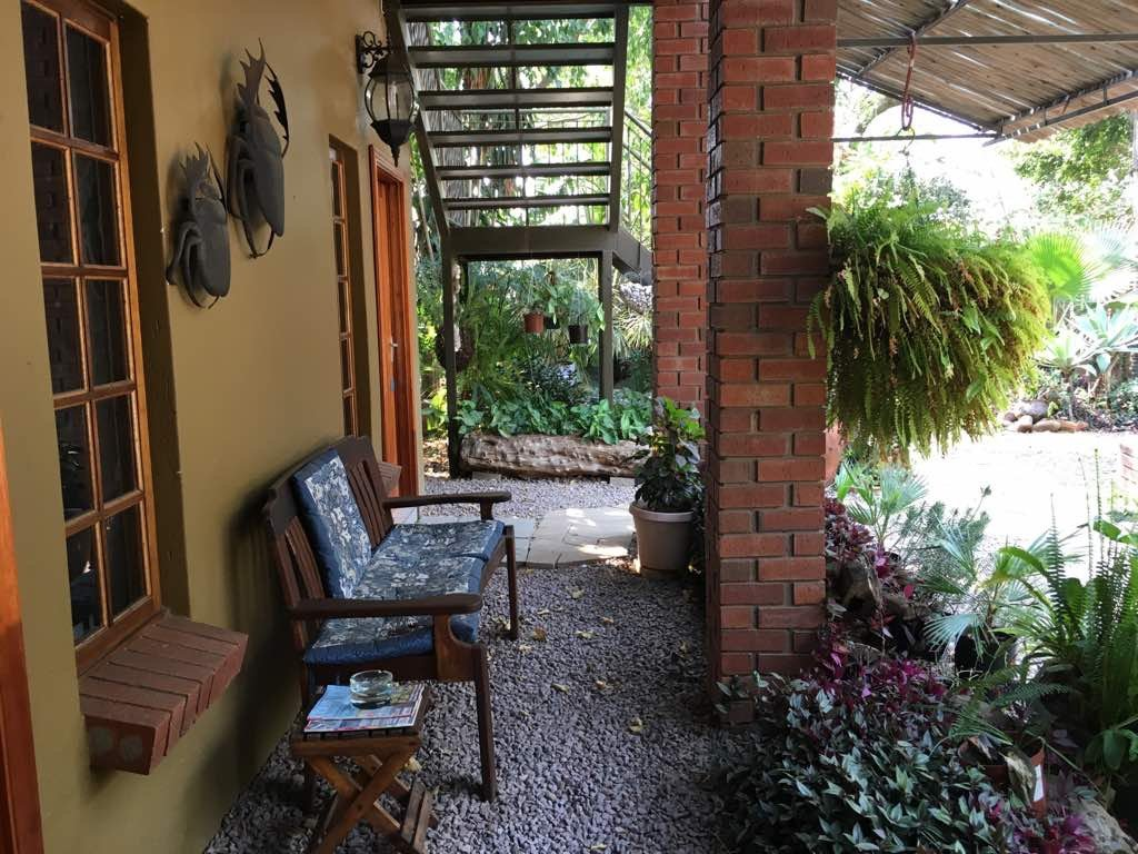 olive leaves guesthouse updated 2017 prices u0026 guest house
