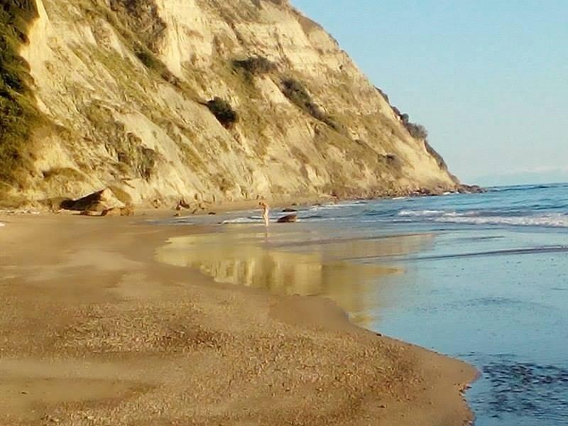 Arkoudilas Beach (Kavos, Griekenland) - Beoordelingen