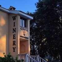 Ezousa Winery