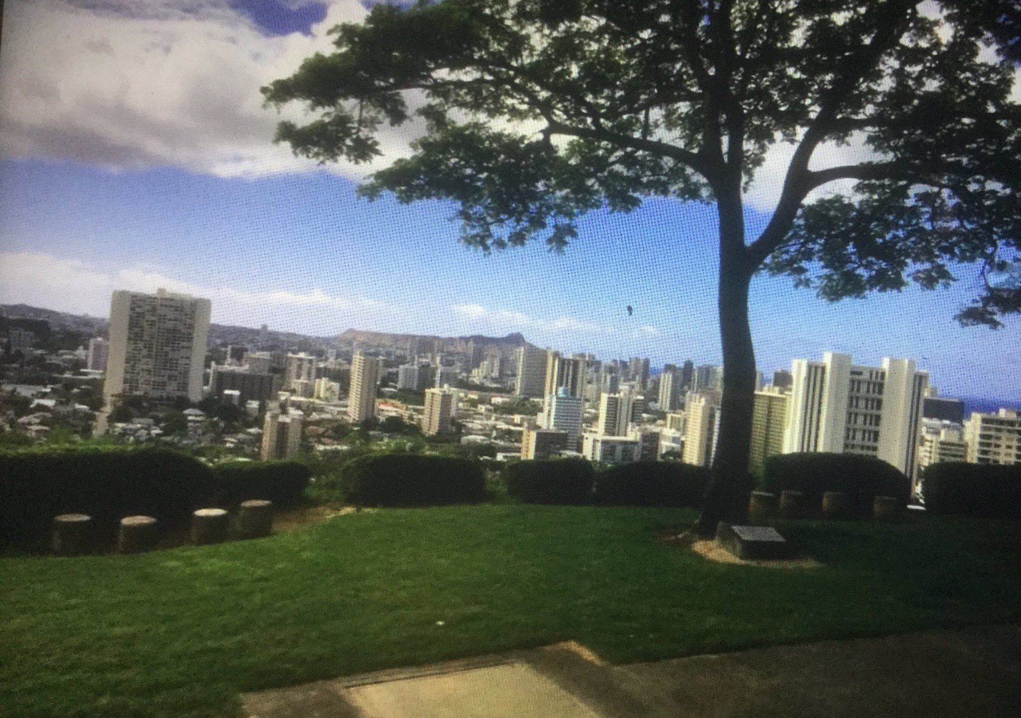 Views to see while on a bus tour to the national memorial cemetery of the pacific