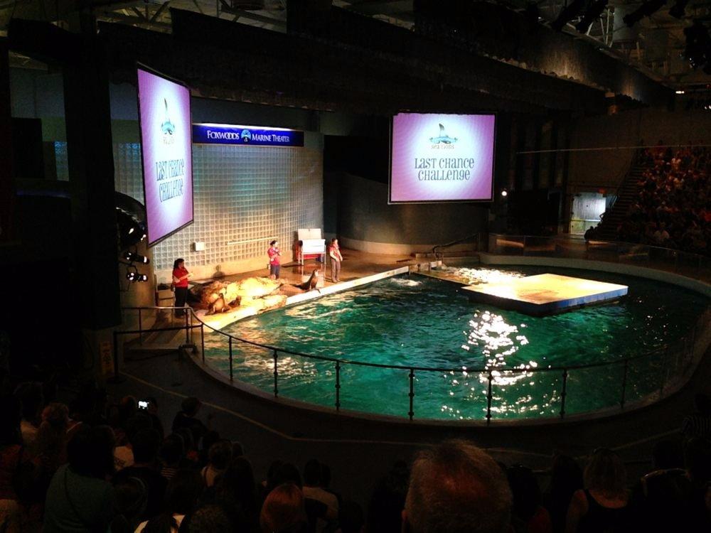 Mystic Aquarium Ct Top Tips Before You Go Tripadvisor