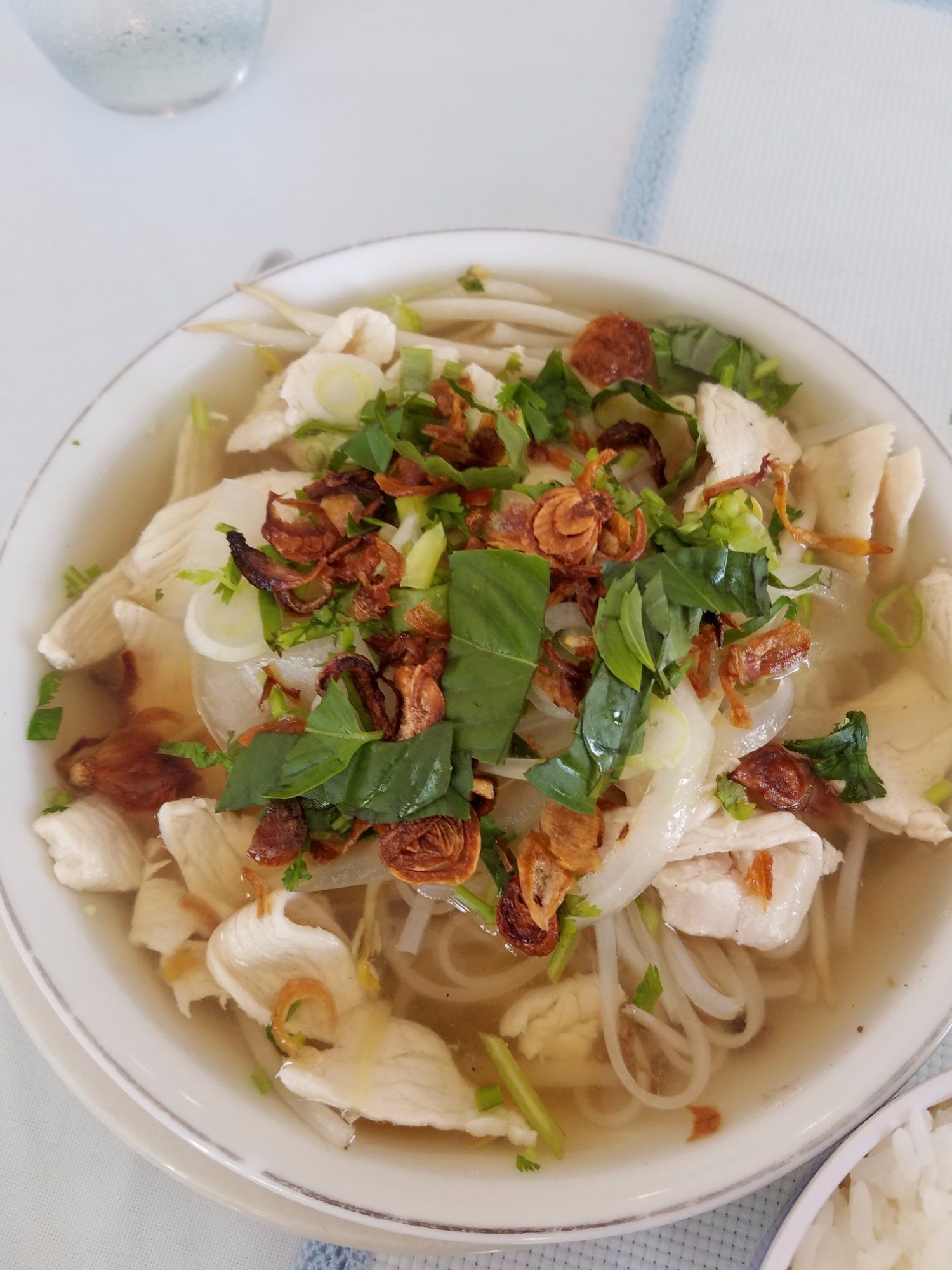 Asian gourmet melbourne restaurant reviews phone for Asian cuisine melbourne