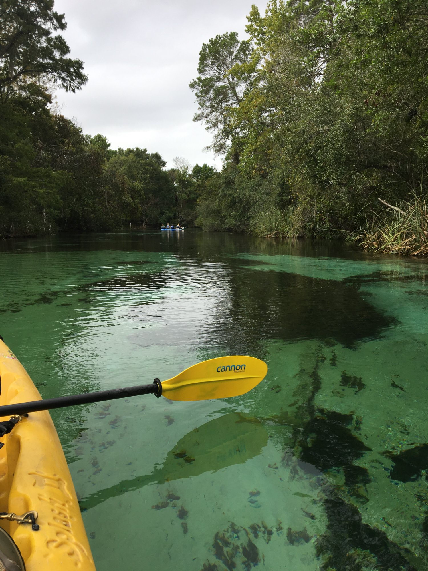 Great place to kayak