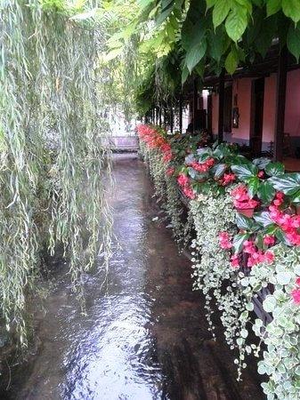 Roggia di Udine di Via Zanon