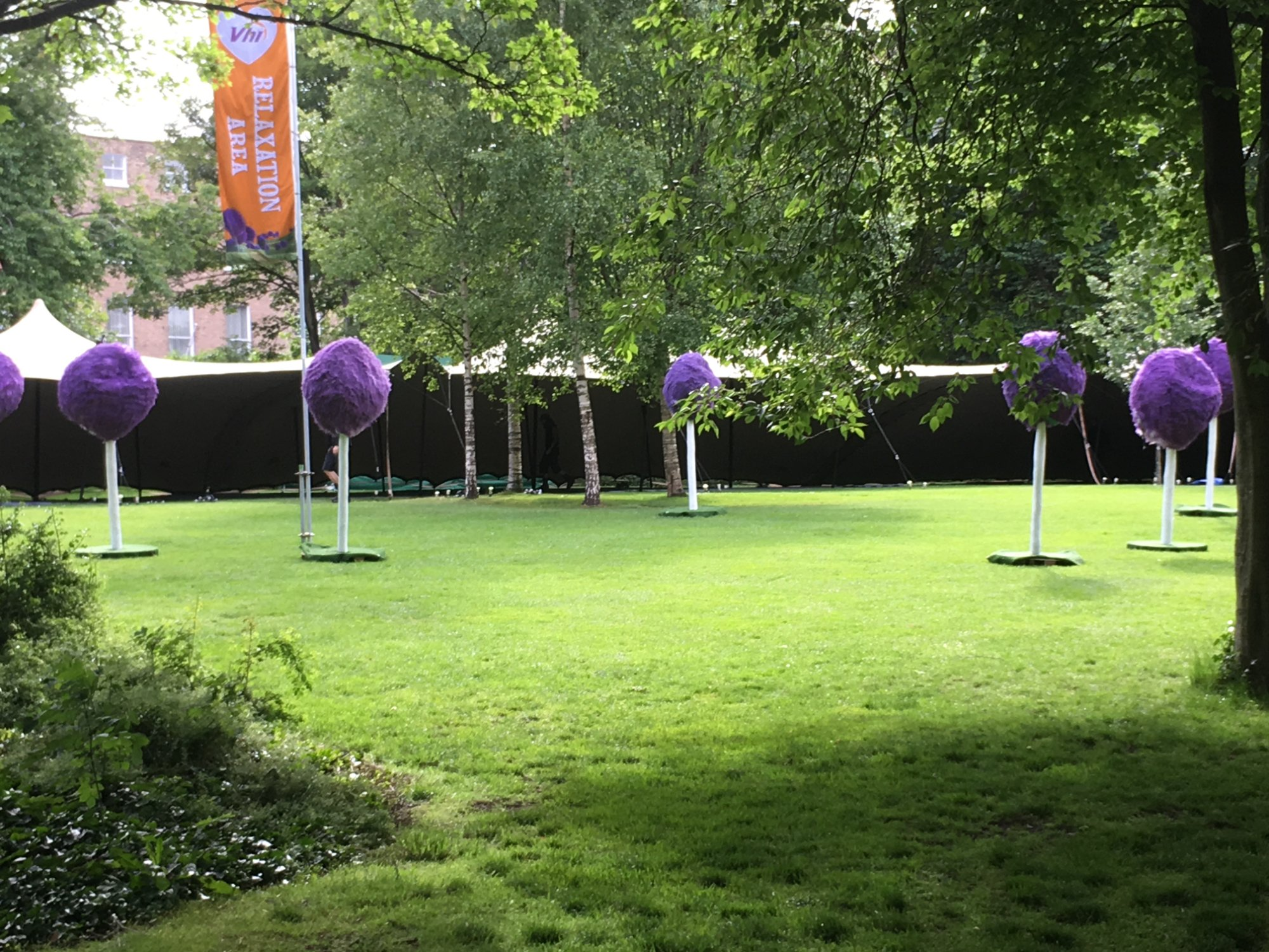 Inexplicable purple things in a Dublin park