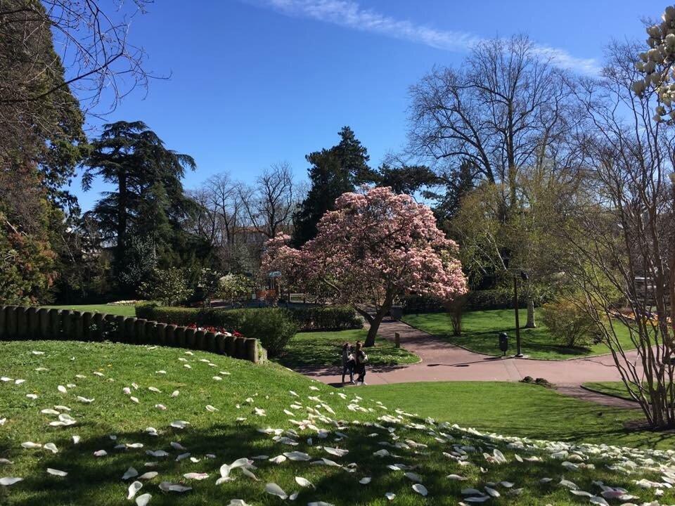 Jardin Lecoq Clermont Ferrand Frankrig Anmeldelser