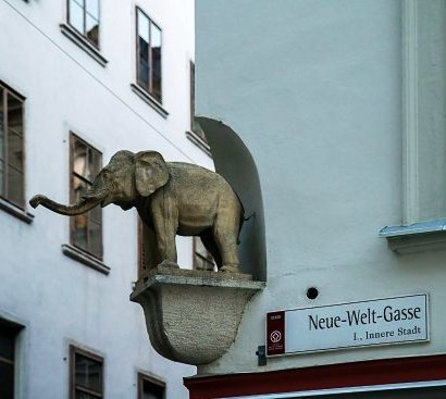 Der Kleine Elefant