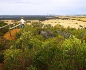 Arthur Drive Scenic Lookout