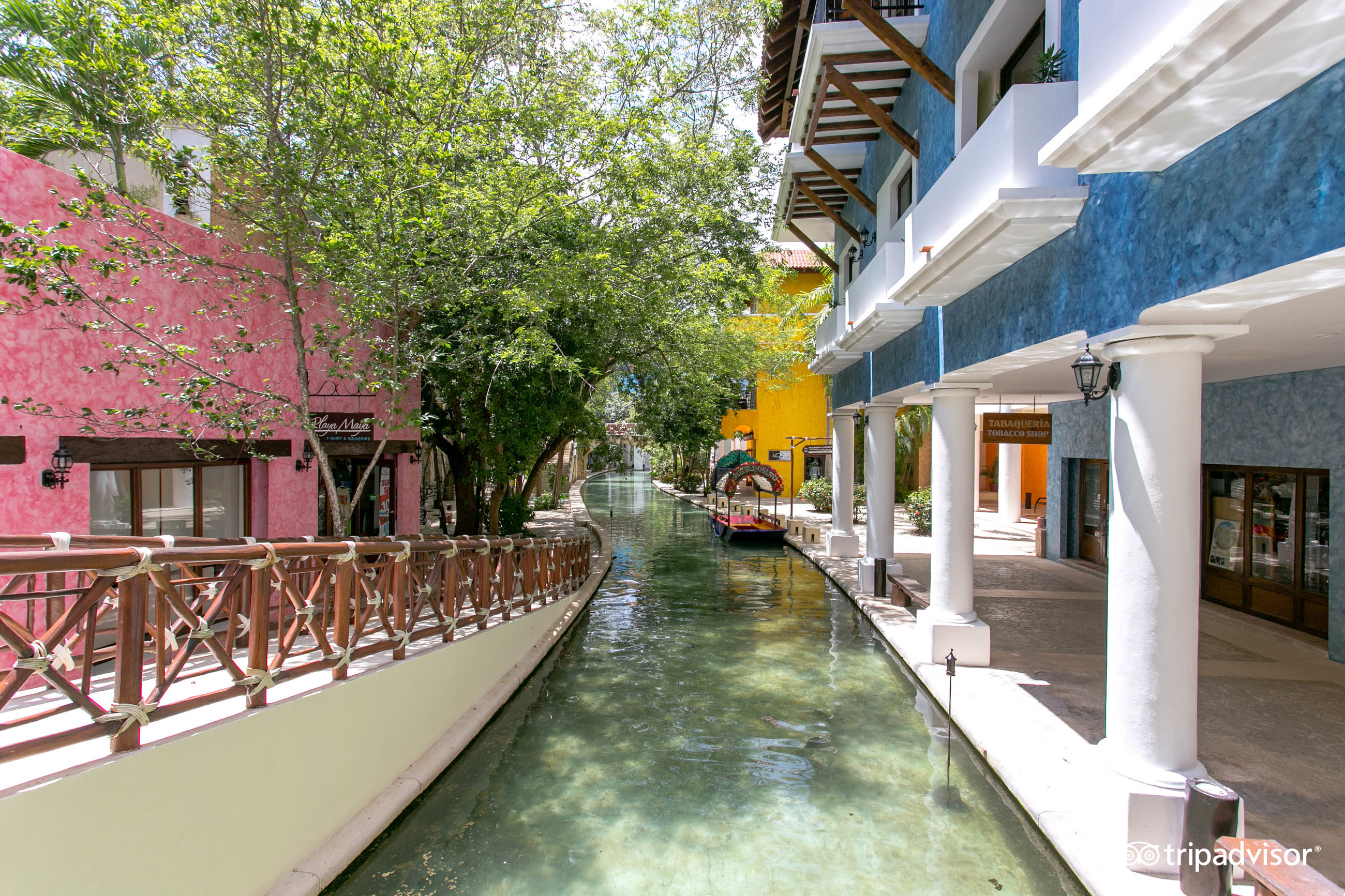 Cancun an all suites resort 2017 review family vacation critic - Occidental At Xcaret Destination Solidaridad 2018 Hotel Review Family Vacation Critic