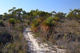 Little Desert Discovery Walk