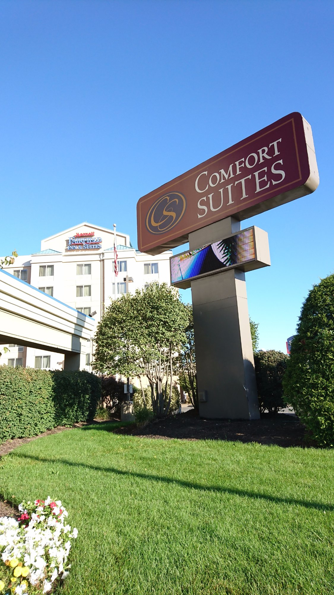 Comfort Suites Updated 2017 Hotel Reviews Price